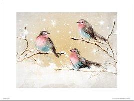 Christmas Vintage Robins