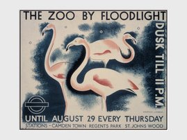 PDC00871-TRANSPORT-FOR-LONDON-the-zoo-by-floodlight.jpg