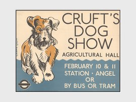 PDC00856-TRANSPORT-FOR-LONDON-crufts.jpg