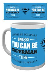 Mg0969-superman-be-yourself-mockup