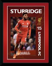 PFA655-LIVERPOOL-sturridge-15-16