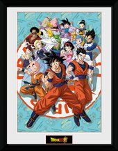 Pfc3537-dragonball-super-universe-group