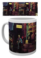Mg1842-david-bowie-ziggy-stardust-mockup