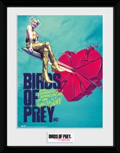 Pfc3623-birds-of-prey-one-sheet-bullet