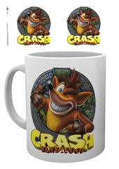 Mg2743-crash-bandicoot-crash-mockup