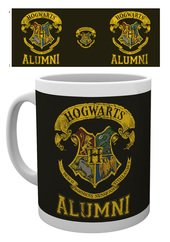 Mg2986-harry-potter-hogwarts-alumni-mockup