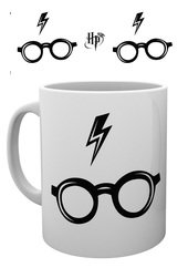 Mg2987-harry-potter-glasses-mockup