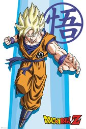 Fp4093-dragon-ball-z-ss-goku