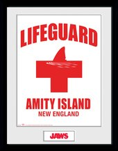 Pfc3359-jaws-lifeguard