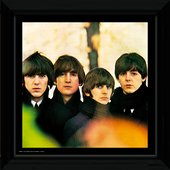 The Beatles For Sale Album