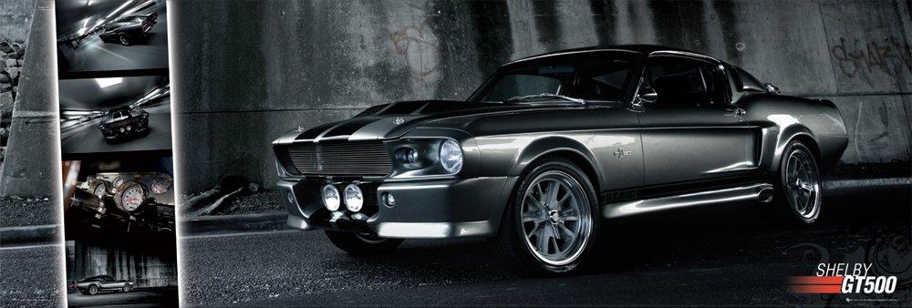 ffbcf1b7602 Ford Shelby