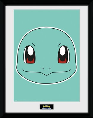 Pfc2260-pokemon-squirtle-face