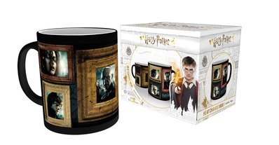 Mgh0013-harry-potter-portraits-product-new