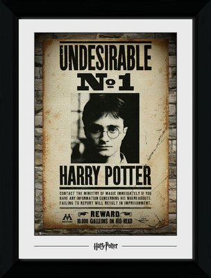 Pfp089-harry-potter-undesirable-no-1