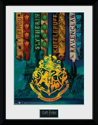 Pfc2959-harry-potter-house-flags