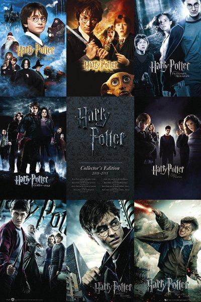 Harry Potter Maxi Poster 61 x 91,5 cm Patronus Stag