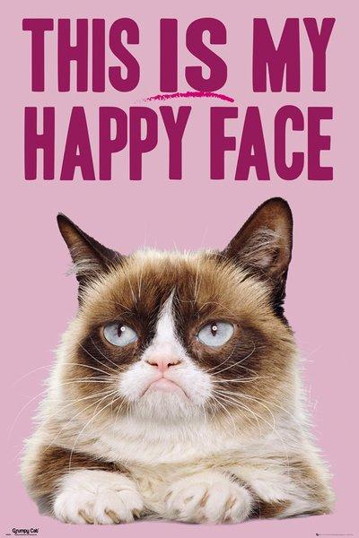 Grumpy Cat School