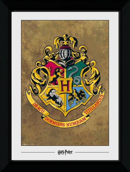 GB Eye 8/x 6/Harry Potter 5/Main gerahmtes Foto