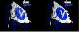 Mg0947-the-vamps-flag