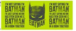 MG0982-BATMAN-i'm-not-saying.jpg