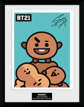 Pfc3469-bt21-shooky