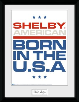 Pfc3484-shelby-born-in-the-usa