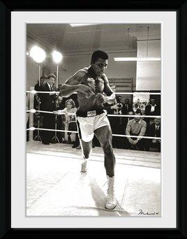 Muhammed Ali - Spa