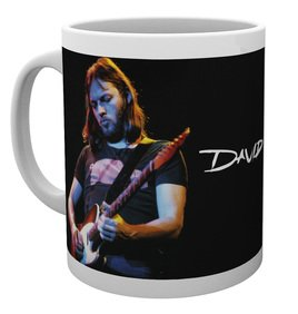 Mg3622-david-gilmour-live-photo-mug