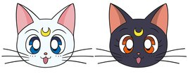 MG1760-SAILOR-MOON-luna-&-artemis.jpg