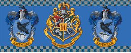 Mg1882-harry-potter-ravenclaw