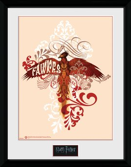 Pfc2237-harry-potter-fawkes