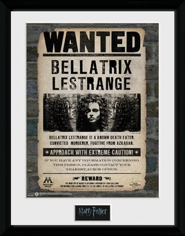 Pfc2235-harry-potter-bellatrix