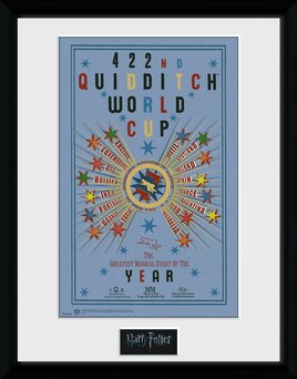 PFC2236-HARRY-POTTER-quiditch-world-cup-2.jpg
