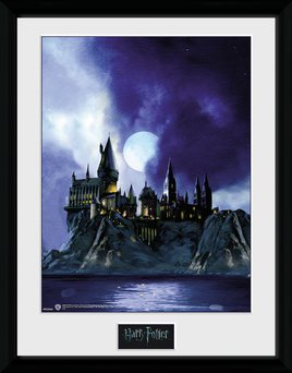 Pfc2234-harry-potter-hogwarts-painted