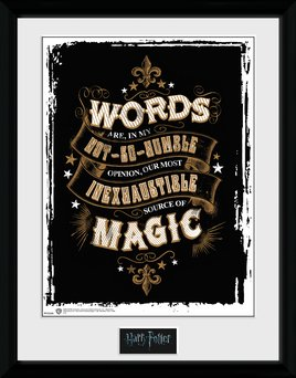 PFC2240-HARRY-POTTER-words.jpg