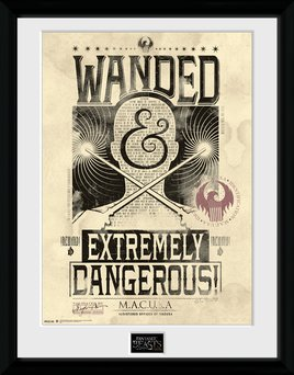 Fantastic Beasts - Wanted