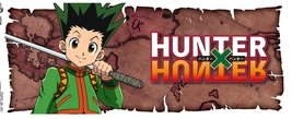 Mg3638-hunter-x-hunter-gon