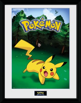 PFC2255-POKEMON-pikachu-catch.jpg