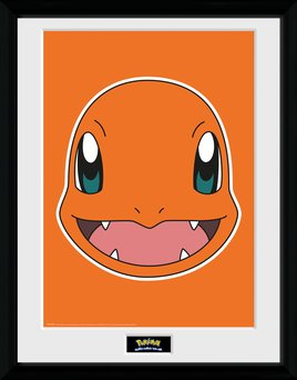 Pfc2257-pokemon-charmander-face