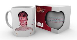 Mg1840-david-bowie-aladdin-sane-product