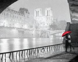 MP1636-PARIS-notre-dame-kiss.jpg