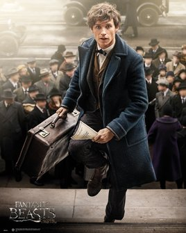MP2033-FANTASTIC-BEASTS-newt-scamader.jpg