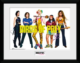 Pfc3541-birds-of-prey-group