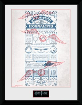 Pfc2335-harry-potter-quidditch-at-hogwarts