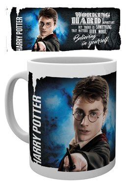 Mg1929-harry-potter-dynamic-harry-mockup