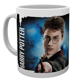 Mg1929-harry-potter-dynamic-harry-mug