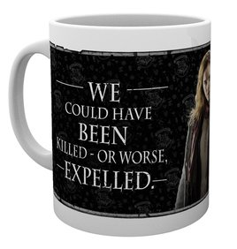 Mg1921-harry-potter-hermione-quote-mug