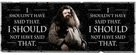 Mg1922-harry-potter-hagrid-quote