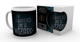Mg2035-fantastic-beasts-i-want-to-be-a-wizard-product