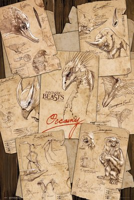 Fantastic Beasts - Field Notes